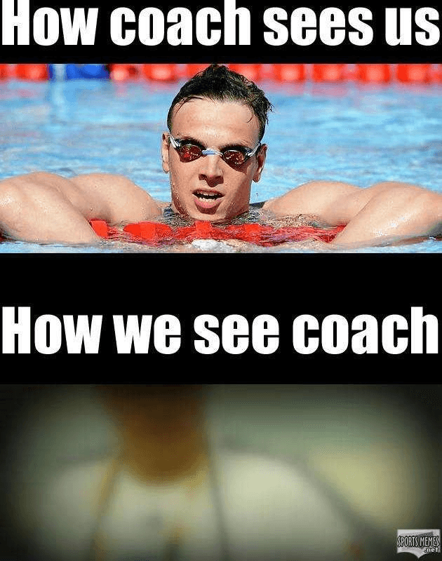 0e9694655f4c2aea7ec369450afbc1a1 30 swimming memes that perfectly describe swimmers