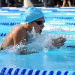 Breaststroke Arms with Flutter Kick: A Drill to Speed Up Stroke Tempo