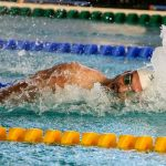 Best Drag Suits for Swimming