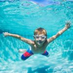 6 Best Above Ground Swimming Pool Covers
